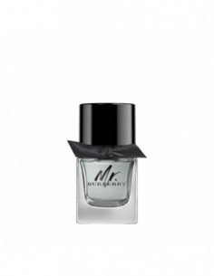 Mr. Burberry Edt